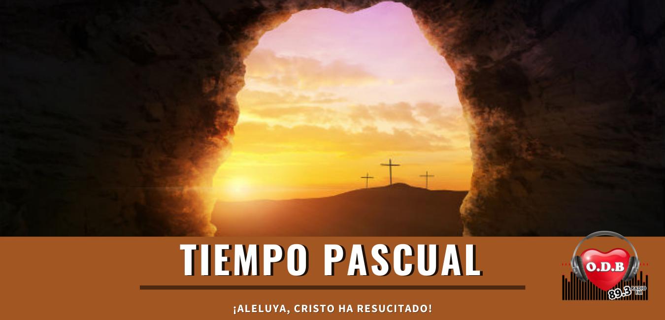 Ondas Don Bosco